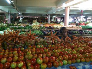 Celiachia e viaggio: come comportarsi alle Tonga