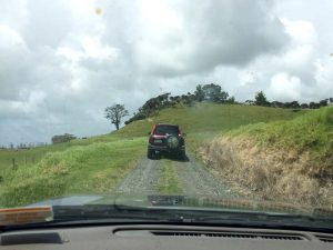 Guidare in Nuova Zelanda