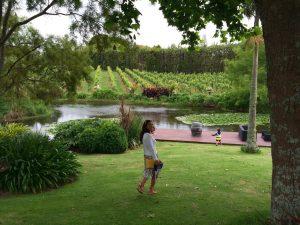 itinerari enogastronomici in nuova zelanda: kerikeri